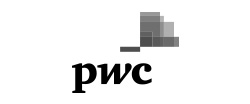 PricewaterhouseCoopers International Logo