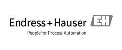 Endress+Hauser Messtechnik GmbH+Co. KG Logo